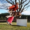 Chalupářské agility